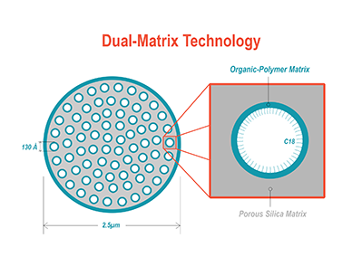 Dacapo DX-C18 Dual-Matrix Porous Particle