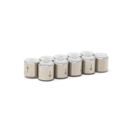 Picture of P-1075 - Replacement Check Valve Capsules, SS, 10PK