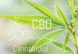 Picture for category Cannabinoids