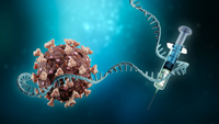 Understanding How mRNA Vaccines Are Produced